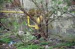 Газові труби на городі у Дрогобичі