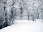 Сніг на дорозі